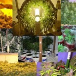Different Kinds of Marijuana Indoor Growing Methods 