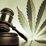 Marijuana Legalization: Yay or Nay?