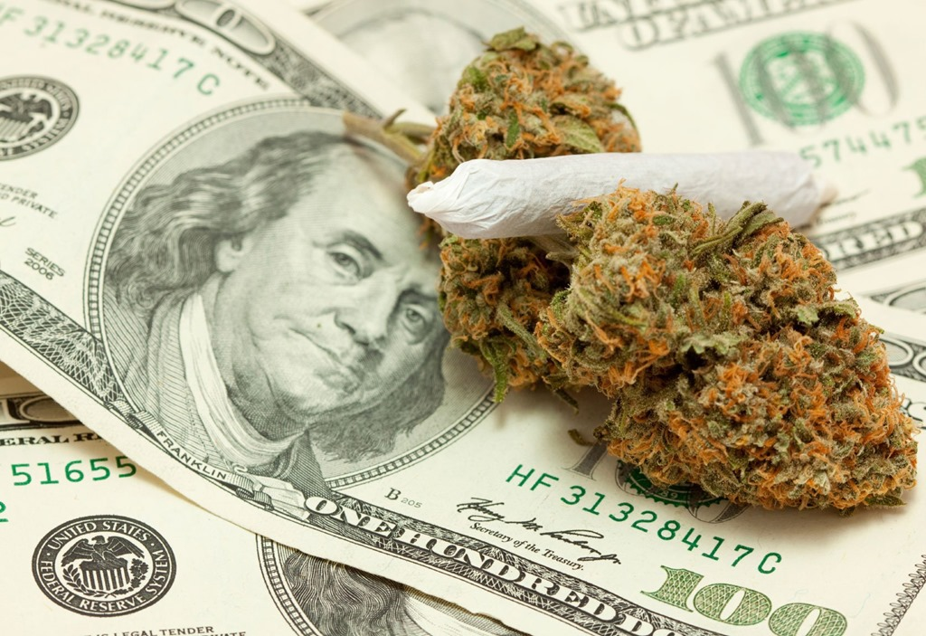 how to become a marijuana millionaire