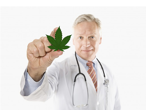 how to get a medical marijuana card in canada