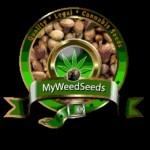 myweedseeds logo