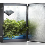 Things You Need for a Small Hydroponic Closet