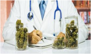 marijuana-and-metabolism