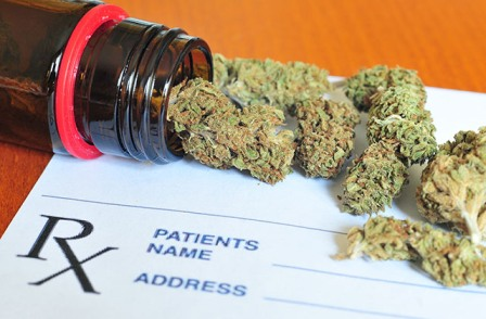 best marijuana strains for PTSD