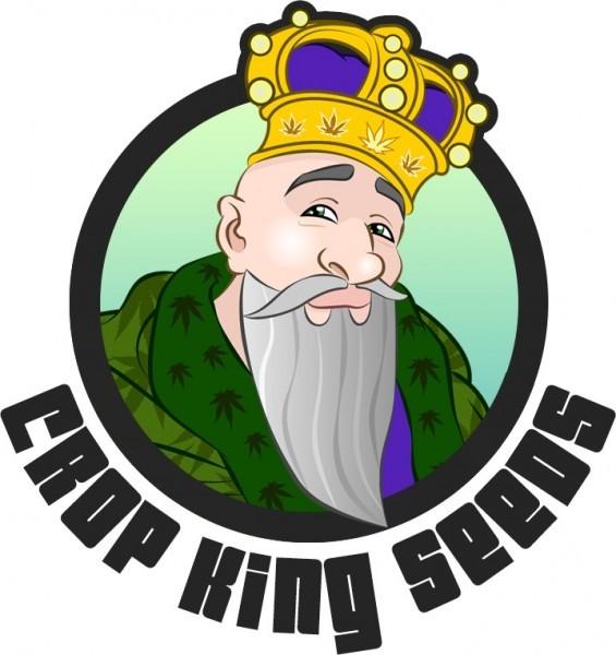 >>> View Pricing of Crop King's Purple Kush << <