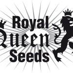 royalqueenseeds logo