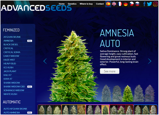 Advanced Seeds Review