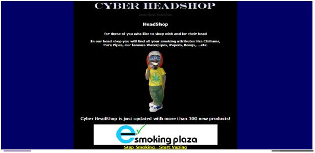 Cyber Head Shop Review