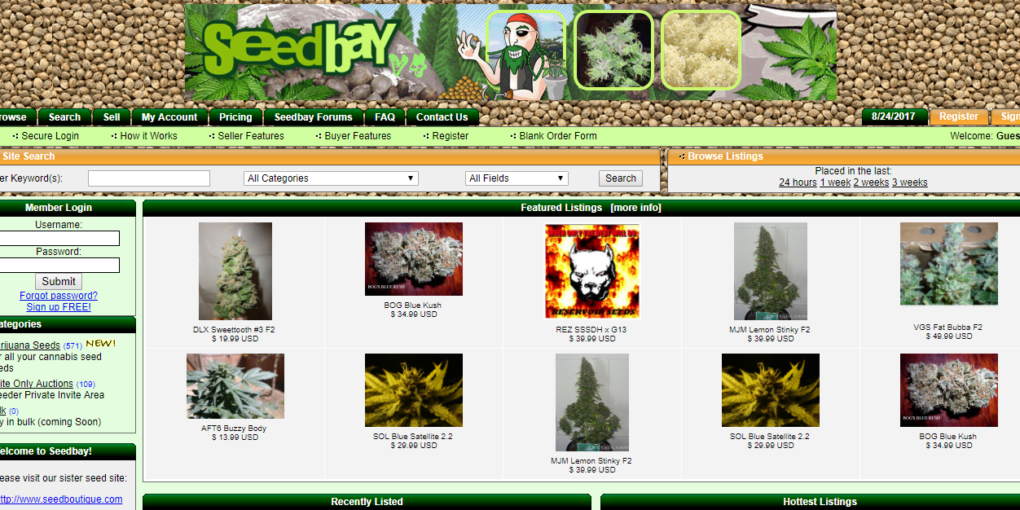 Seedbay Review